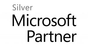 Partner Silver Logo
